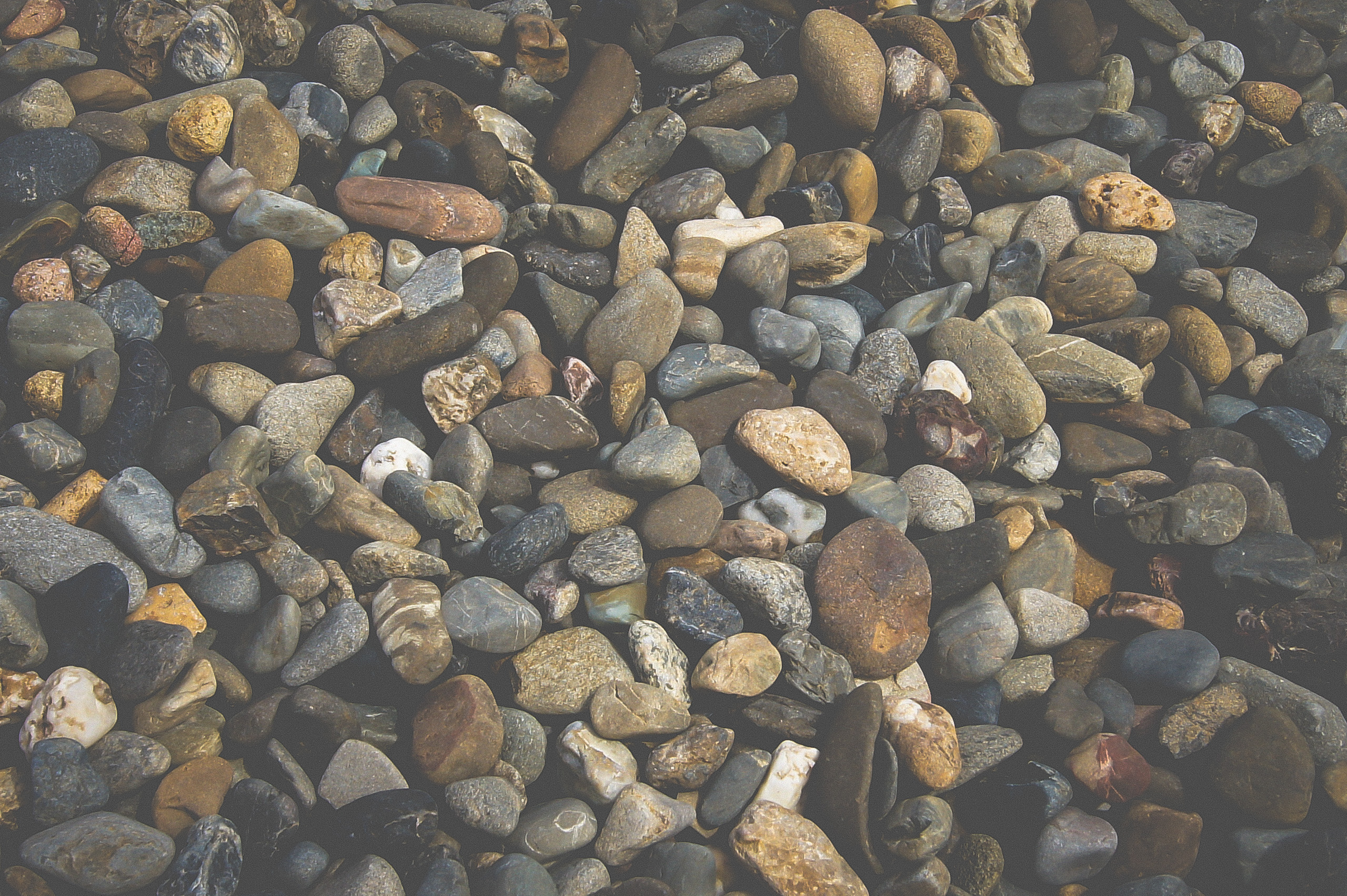 Grey River Pebble 20mm Closeup Landscape Supply Photography