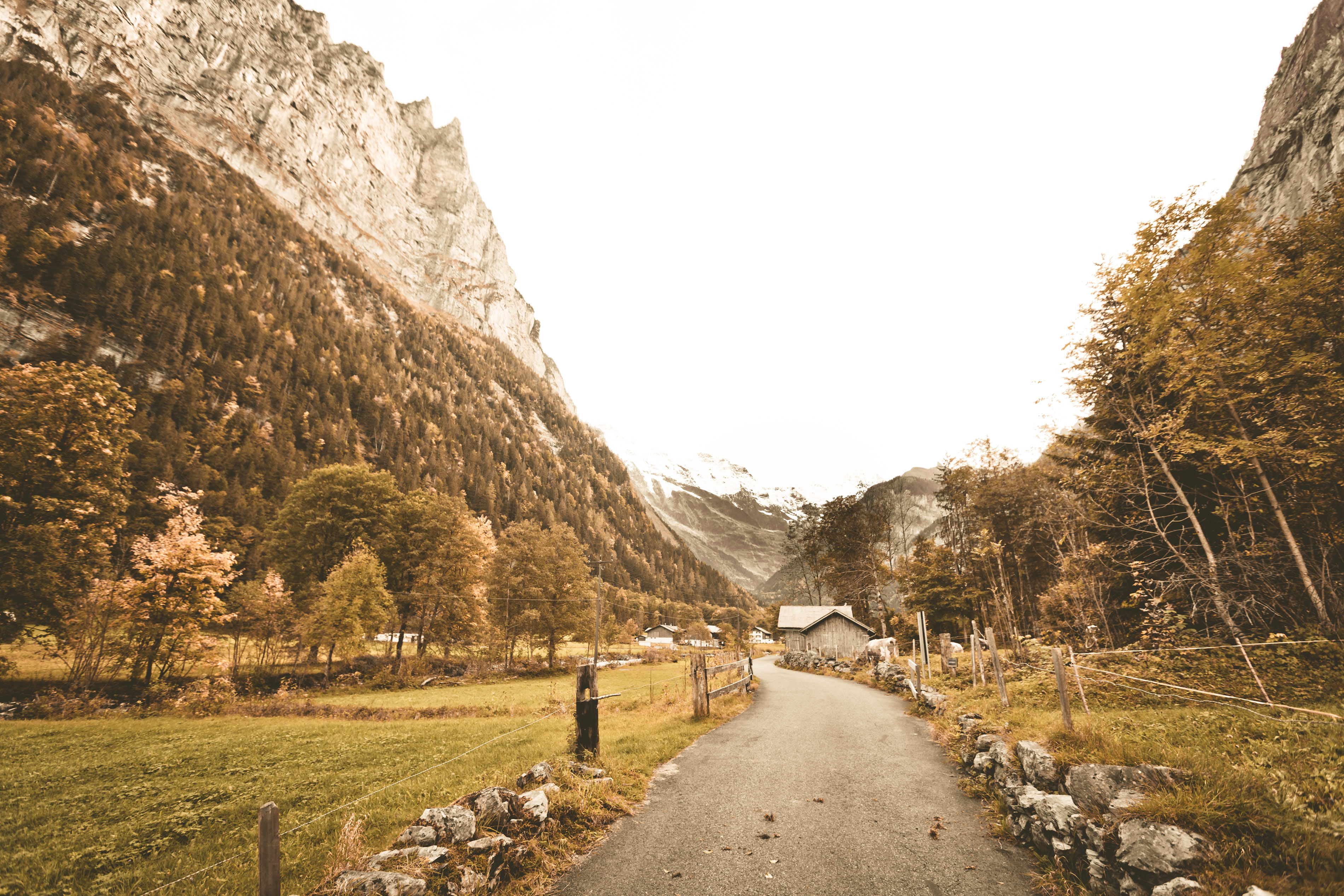 Heading down the path in the Swiss Alps
