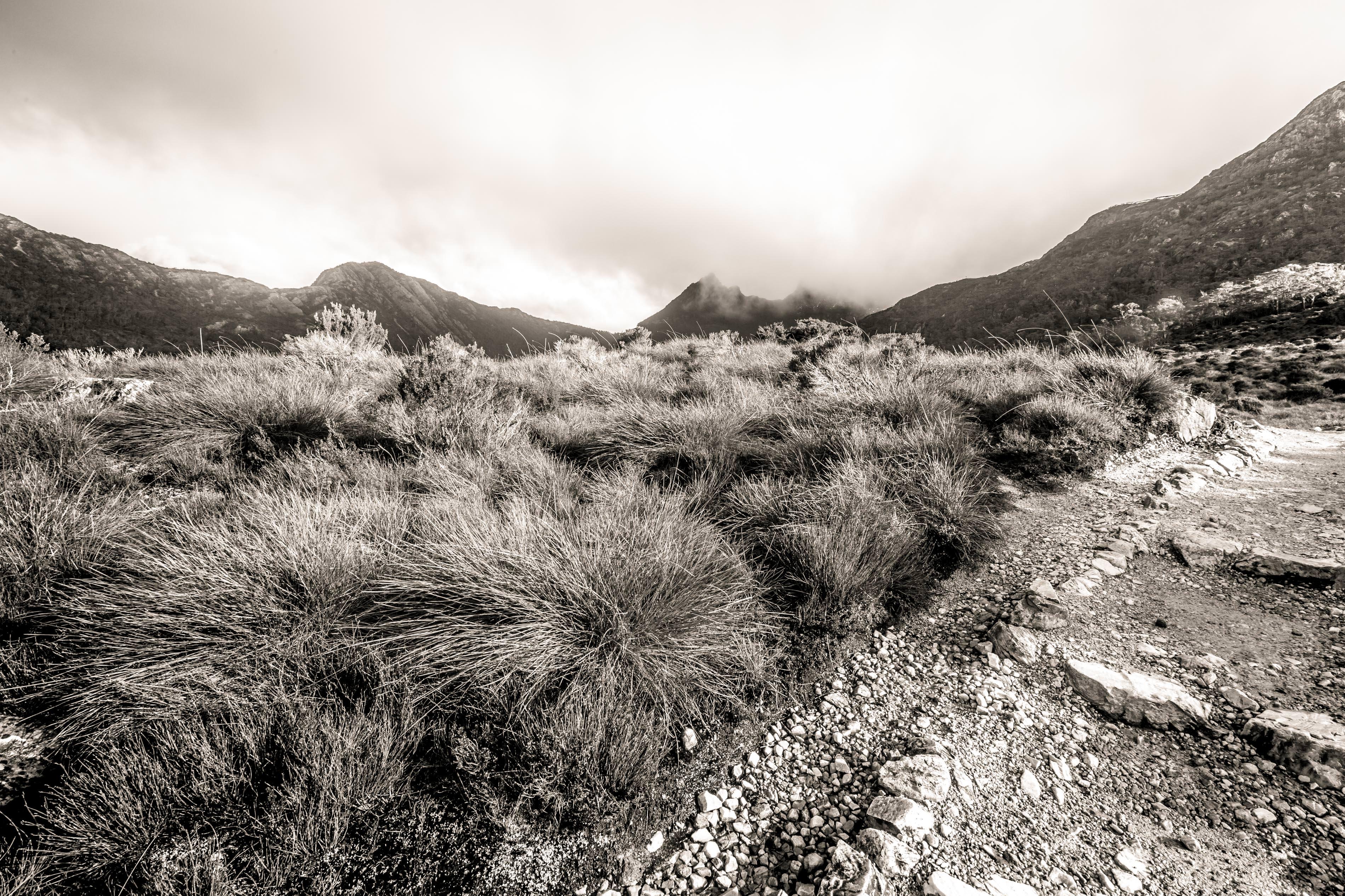 Travel photography in Tasmania - Cradle Mountain